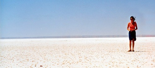 Dry lake in South Australia is all salt about 10cm thick on the edge.