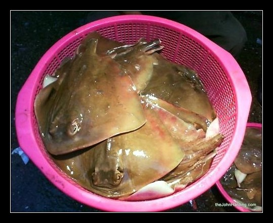 how to cook fresh abalone chinese style