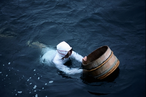 Ama diver, Japan  (Wikipedia.org)